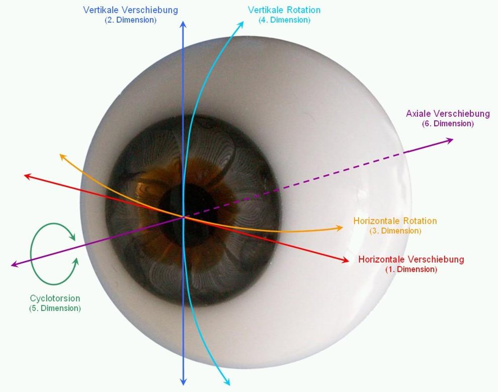 Modell des Auges mit 6 Dimensionen der Bewegung